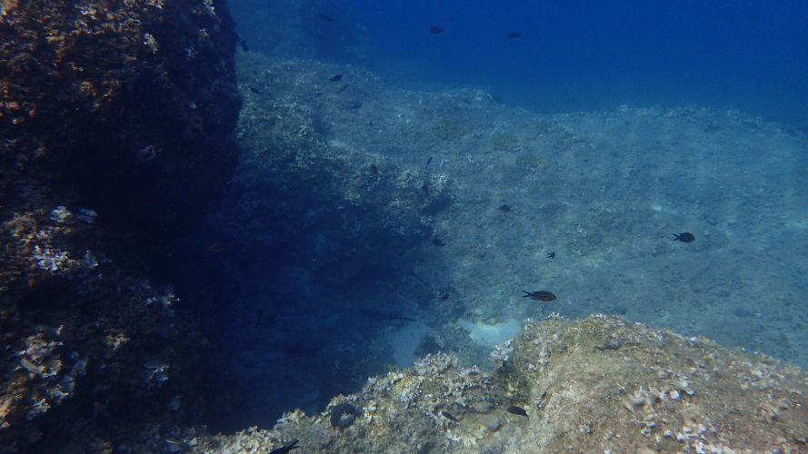 IMG_2222Ionian Diving