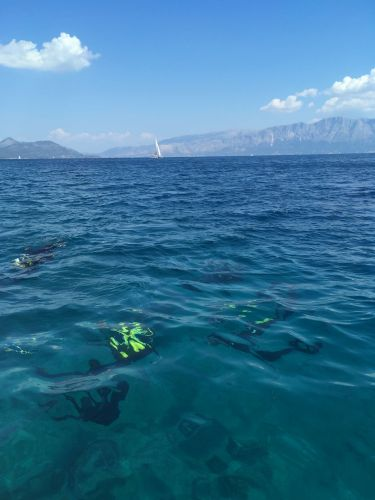 Ionian Diving